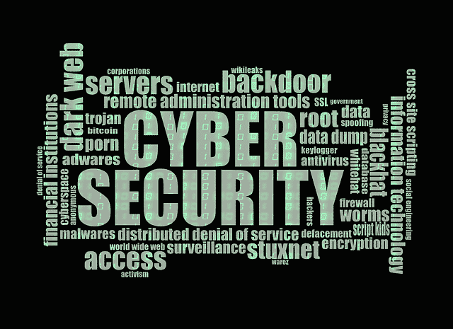 Cyber Security and help with IT Network solutions, Network Coverage, privacy concerns, online safety.